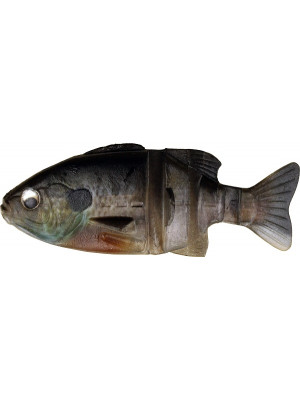Javagill - S-424 Male Gill