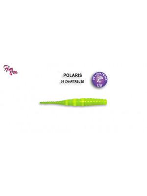 POLARIS 5 - 4.5 cm - 6 - SQUID